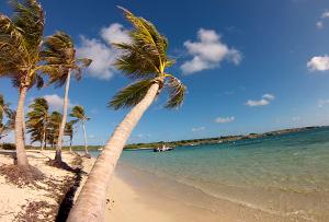 Croisiere aux Grenadines