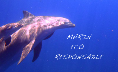 Marin-ECO-responsable